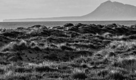 Temor a que las regeneraciones de las playas de Dénia dañen la vida marina