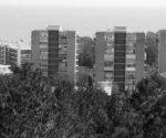 Debate: ¿Hacen falta más viviendas en Dénia?