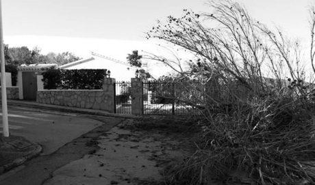 El fort vent que té en alerta a tota la comarca cancel·la actes i provoca la caiguda d'arbres