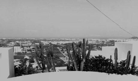 Arranca la regeneración de la cantera de La Pedrera de Dénia como bosque mediterráneo con un mirador a 48 metros de alto