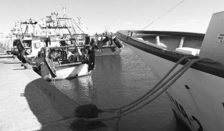 El fort vent reté a la flota en els ports i obliga a tancar parades del mercat de Xàbia