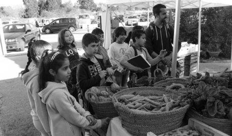 Dénia promou el consum de fruita i verdures ecològiques entre uns 700 escolars