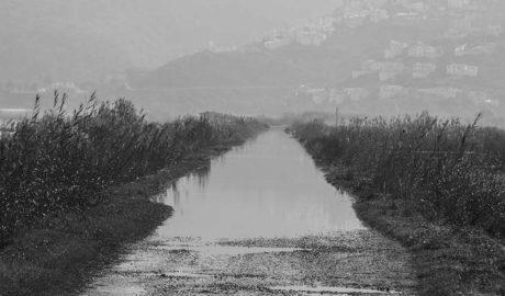 Respuesta a una reivindicación histórica: el Consell reactiva por urgencia la concentración parcelaria del Marjal