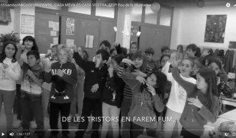 Els VÍDEOS amb els quals 6 escoles de Dénia i Pedreguer aspiren a triomfar en el cinema valencià
