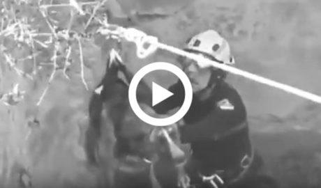 [VÍDEO] El cuidadoso rescate de un perro por los Bomberos en el Montgó