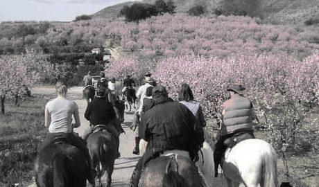 Alcalalí florece con la tercera edición de Feslalí