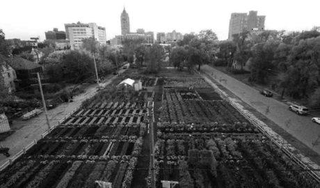 L'agricultura ha de formar part de les ciutats: el camí de Dénia i altres poblacions del món