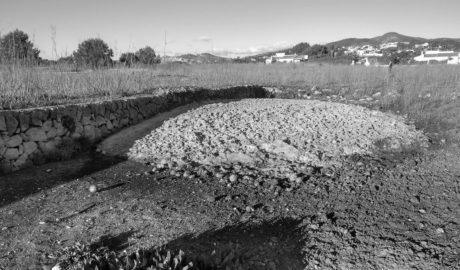 Podemos denuncia vertidos «ilegales» de naranjas en los campos de Xàbia
