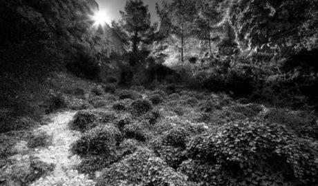 El Montgó y la Reserva pugnan por ser 'El rincón más bonito de la Red Natura' en España a través de dos impresionantes fotos