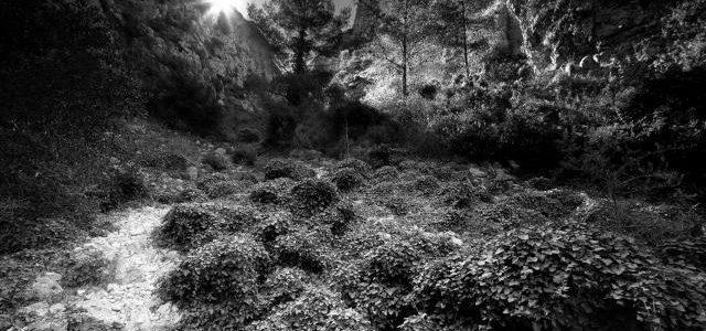 El Montgó i la Reserva pugnen per ser 'El racó més bonic de la Xarxa Natura' d'Espanya amb dues impressionants fotos